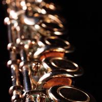 Non-Degree Recital: Priya Fink, flute