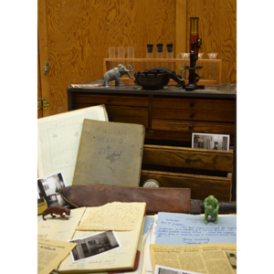 """""""Shhh! Don't Tell Anyone!"""" Uncovering Histories of the Longyear Museum of Anthropology"""