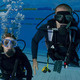 SCUBA Scholarship Deadline April 16, 2019