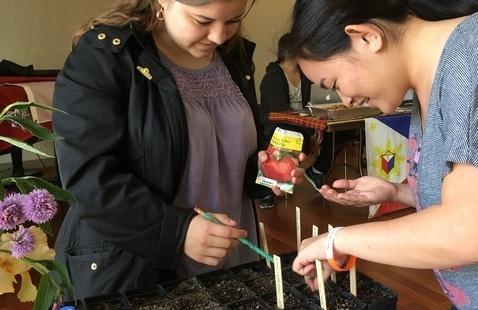 Starting Garden Seeds: A Hands-On Garden Workshop
