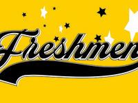 Group Show: Freshmen