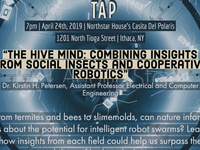 """Science on Tap:  """"The hive mind"""""""