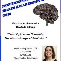 Northeastern University BRAIN AWARENESS WEEK 2019