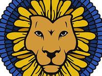 D'Lion Laser Tag