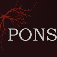 PONS Luncheon Roundtable: Neuromuscular Disorder Research