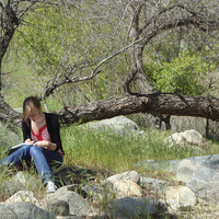 Introduction to Nature Journaling
