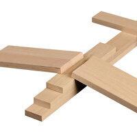 S.T.E.M. KEVA Planks