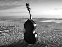 Justin McCulloch Double Bass DMA Recital
