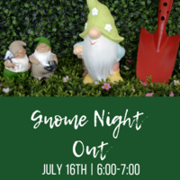Gnome Night Out