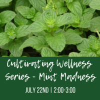 Cultivate Wellness Series - Mint Madness