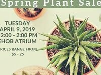 Plant Sale!  East Hill Office Building