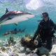 """Hot Science - Cool Talk """"Save the...Sharks!?"""""""