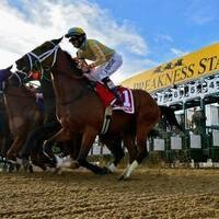 History Happy Hour: A Day at the Races