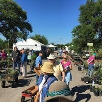 Spring Native Plant Sale