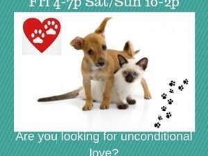 Adoption Event!!!