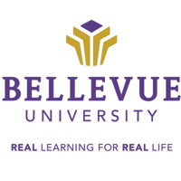 Bellevue University at South