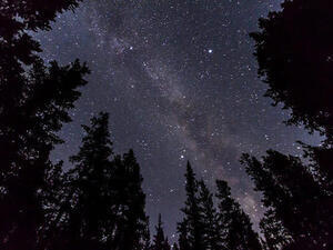 Night Sky, Live! Daytime Spring Planetarium Show