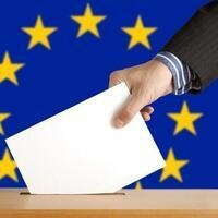 European Parliament Elections and Beyond