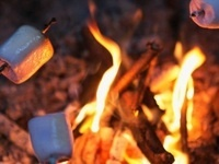 SUB Campfire Night