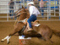 Good Times Barrel Racing Association The Equinety Race II