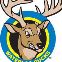 Waterloo Bucks vs. Duluth Huskies
