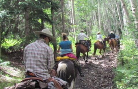 Horsemanship and Riding