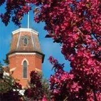 Free: Spring Color Tree Walk
