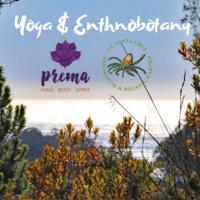 Spring Yoga & Ethnobotany Series