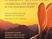 Culture Fix - Film: Desert Dreams