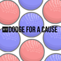 Humanity First's Dodge for a Cause
