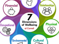 Creating A Culture of Wellbeing