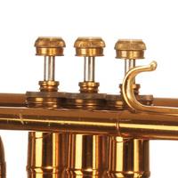 Senior Recital: Adam Shohet, trumpet