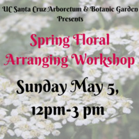 Spring Floral Arranging: Nature Craft Workshop