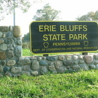 The Vernal Pools of Erie Bluffs State Park