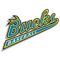 Bucks Baseball logo