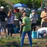 Weekly Vegetable Garden Huddle