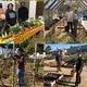 Robb Garden Interns' Open Garden