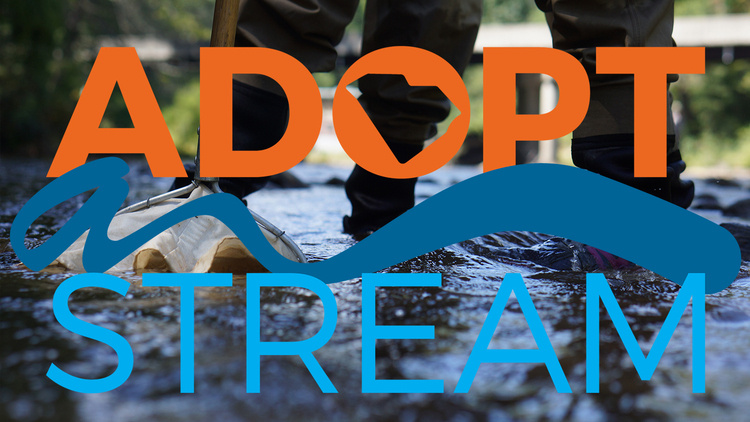 SC Adopt-a-Stream Physical/Chemical and Bacterial Monitoring Workshop