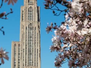 OHR Webinar: A Guide to Your Benefits at Pitt