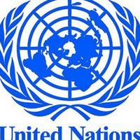 Model UN Open Debate