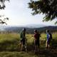 Alsea Falls Mountain Biking
