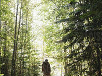 Integrative Oncology Lecture Series: Forest Immersion