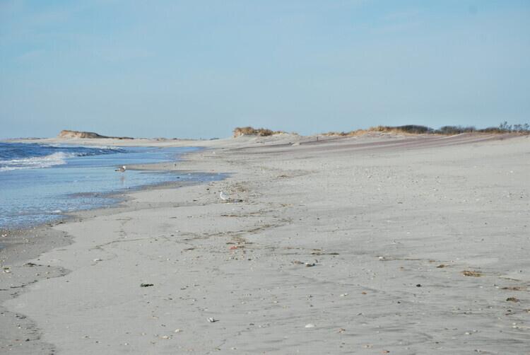 I Love My Park - Pick It Up! Coastal Cleanup