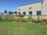 Pollinator Garden Prep
