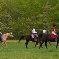Campus Rec Fest: Equestrian Center Hay Rides