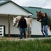 Liberty Equestrian Summer Day Camp