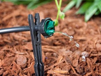 Building and Maintaining a Drip Irrigation System