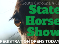 SC 4-H State Horse Show Registration Open