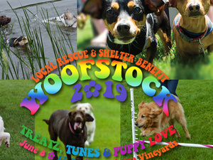 Woofstock 2019: Local Rescue & Shelter Benefit