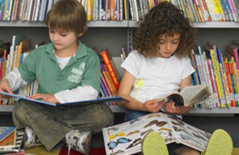 More Fun Than Summer Slide: Reading Group